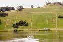 Жените като футболен терен